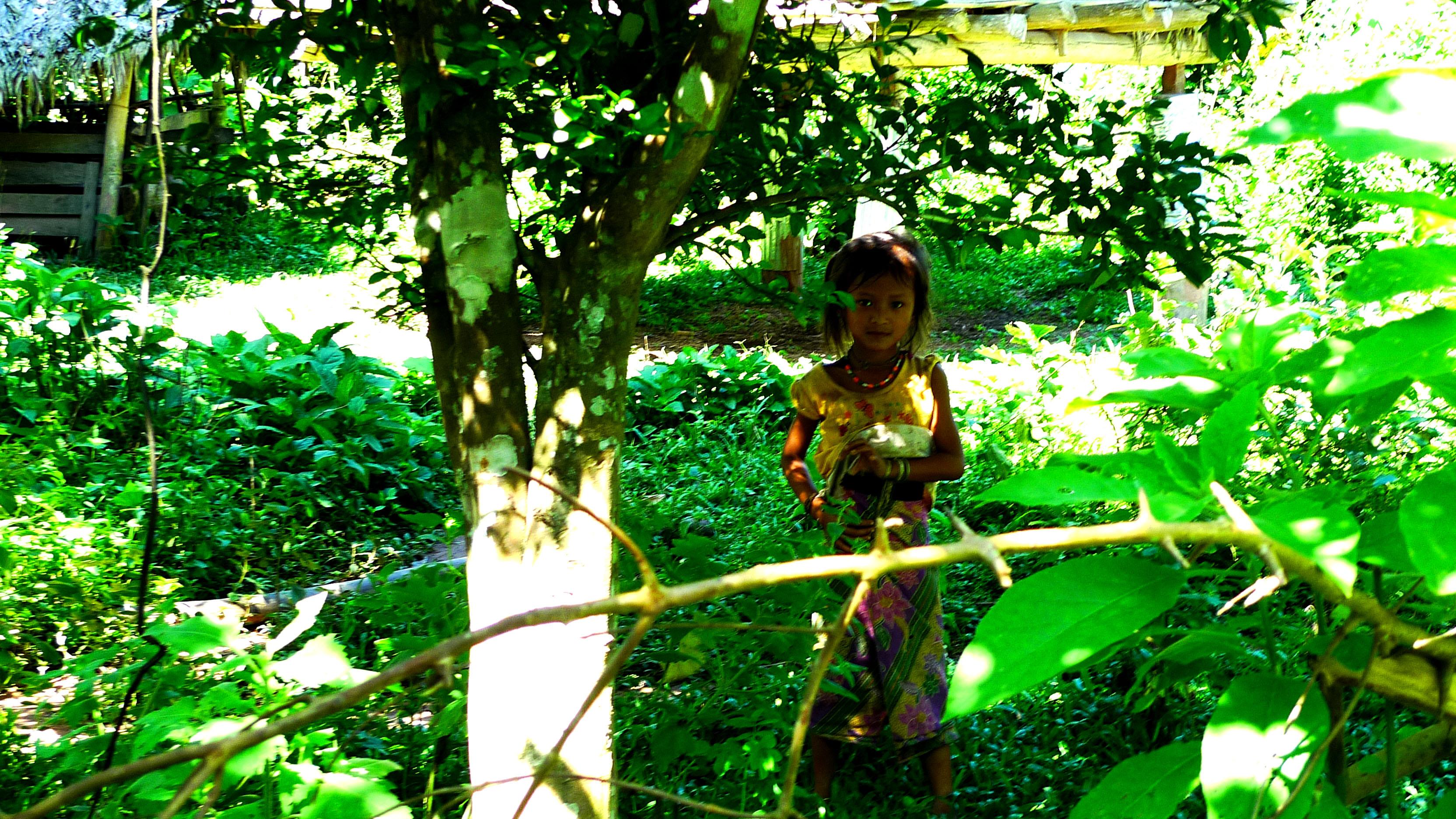 El Salto al Vacío: guía para preparar la Gibbon Experience